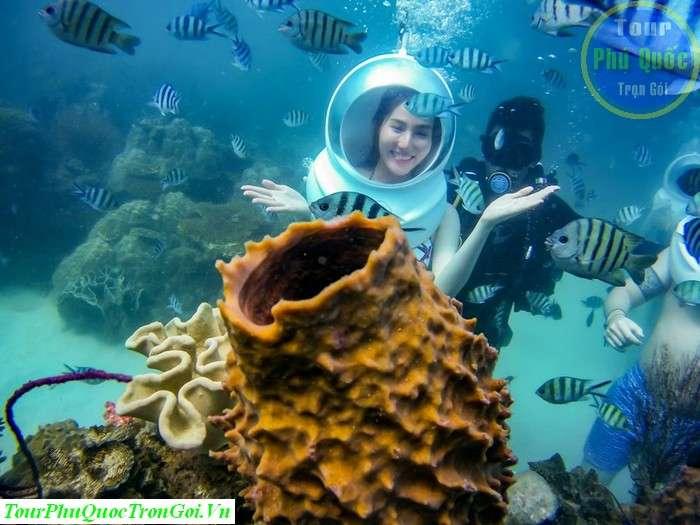Tour Đi Bộ Dưới Biển Khám Phá Đại Dương Seawalker Phú Quốc