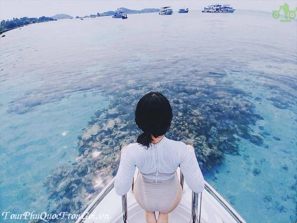 Tour Du Lịch Lào Cai Phú Quốc
